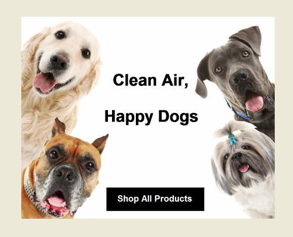 Clean air, happy dogs with Air Oasis Air Purifiers